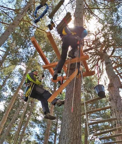 remplacement d'une plateforme en bois dans un parc acrobatique en hauteur